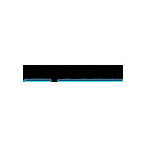 AllayP300